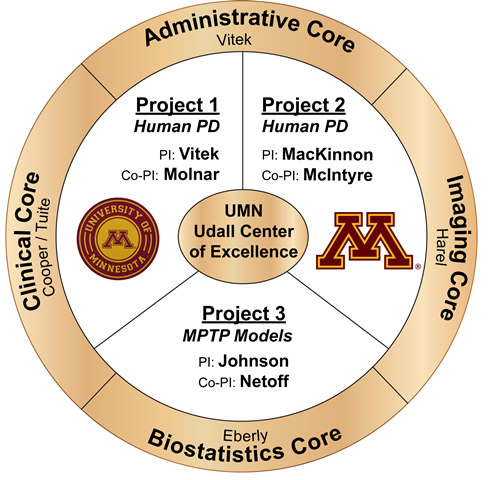 Overview of structure of UMN Udall Center of Excellence for Parkinson's Research
